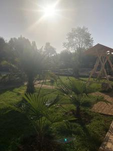 Villa Apsua, Villák  Picunda - big - 26