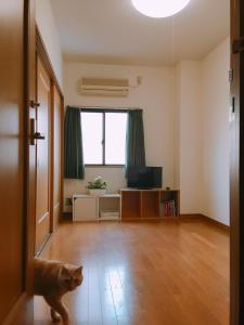 Que sera sera Guest house, Apartmanok  Oszaka - big - 15