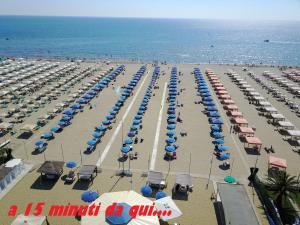 villino Arancio, Case vacanze  Massarosa - big - 29