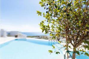 Stunning 2-Bedroom Apartment in Tinos