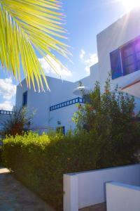 Sirius Apartments, Aparthotely  Hersonissos - big - 50