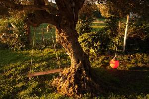 Casa Rural La Zarzamora, Загородные дома  Вьер де ла Фронтера - big - 18