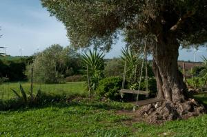 Casa Rural La Zarzamora, Загородные дома  Вьер де ла Фронтера - big - 17