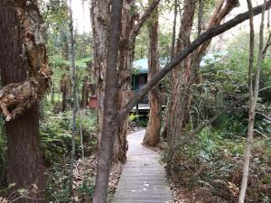 Wanderers Retreat, Resorts  Nelson Bay - big - 59