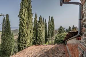 Agriturismo Fattoria Di Gratena, Farmházak  Pieve a Maiano - big - 60