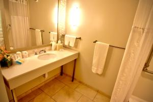 King Room with Bath - Disability Accessible/Non-Smoking