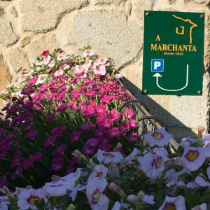 Casa A Marchanta