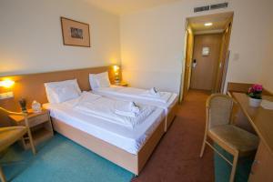 Zichy Park Hotel, Hotely  Bikács - big - 7