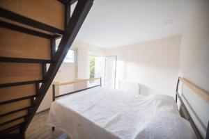 Backyard Apartment in Charming City Center, Apartments  Tbilisi City - big - 13