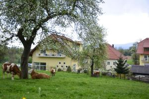 Hotel-Gasthof Stoff, Hotel  Wolfsberg - big - 60