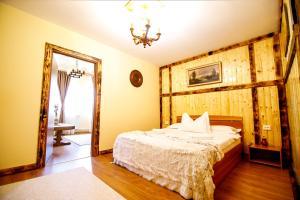 Hotel Conacul Salonti, Отели  Sebeş - big - 2