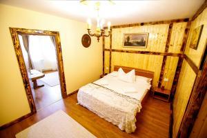 Hotel Conacul Salonti, Отели  Sebeş - big - 4