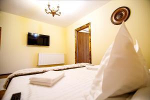 Hotel Conacul Salonti, Отели  Sebeş - big - 6