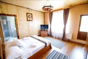 Hotel Conacul Salonti, Отели  Sebeş - big - 29