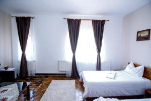 Hotel Conacul Salonti, Отели  Sebeş - big - 40