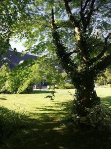 La Cour d'Hortense, Bed & Breakfast  Sailly-Flibeaucourt - big - 135