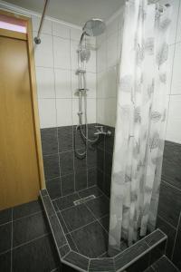 Guesthouse Adi, Penziony  Mostar - big - 57