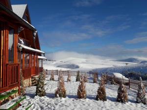 Eco Cottages Mir, Chalets  Zlatibor - big - 34