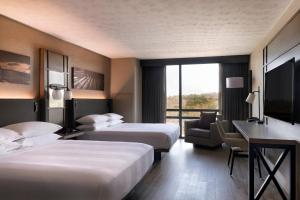 Deluxe King or Double Room