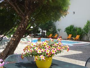 Olympus Hotel Villa Drosos, Szállodák  Litóhoro - big - 61