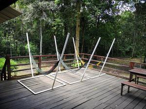 Kinabatangan Jungle Camp