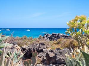 Estrella de Mar, Prázdninové domy  Punta de Mujeres - big - 13