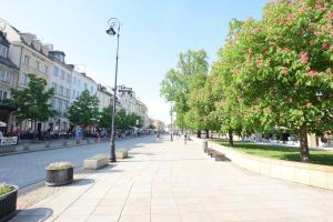 Elegant Apartment Royal Route, Appartamenti  Varsavia - big - 64