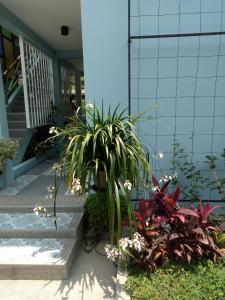 Baan Jaru, Гостевые дома  Чианграй - big - 94