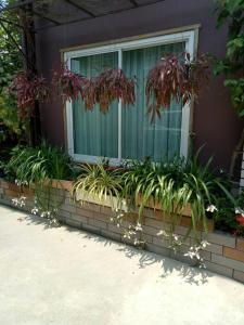 Baan Jaru, Гостевые дома  Чианграй - big - 59