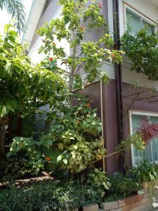 Baan Jaru, Гостевые дома  Чианграй - big - 92