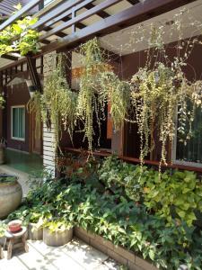 Baan Jaru, Гостевые дома  Чианграй - big - 57