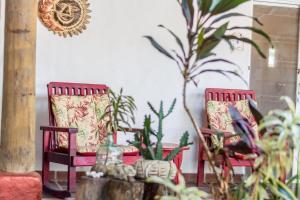 Villa Margarita, Bed and breakfasts  Alajuela - big - 48