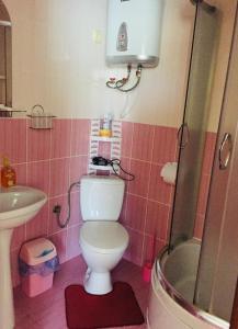 Mini Hotel Furmi, Inns  Skhidnitsa - big - 21