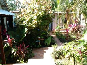 Roatan Backpackers' Hostel, Hostelek  Sandy Bay - big - 86