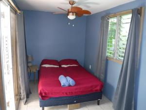 Roatan Backpackers' Hostel, Hostelek  Sandy Bay - big - 92