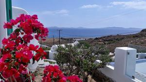 Antoninis Village
