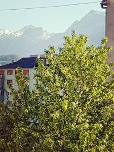 Urban Apartment & Hostel, Hostels  Konjic - big - 35