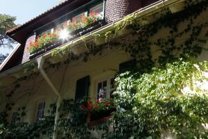Haus Hubertus, Ferienwohnungen  Ostseebad Boltenhagen - big - 64
