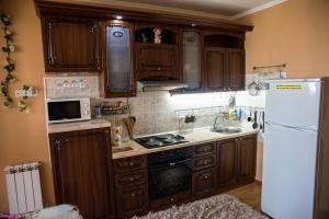 Apartment Halturinskiy Pereylok 85, Appartamenti  Rostov on Don - big - 24