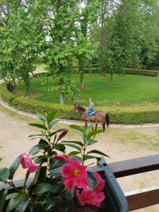 Cavalli&Natura - AbcAlberghi.com