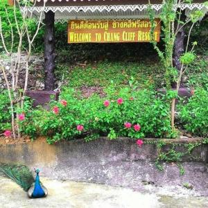 Chang Cliff Resort, Resort  Ko Chang - big - 78