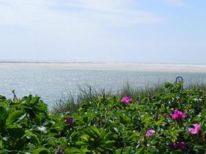 Inselnest am Meer, Ferienwohnungen  Wittdün - big - 18