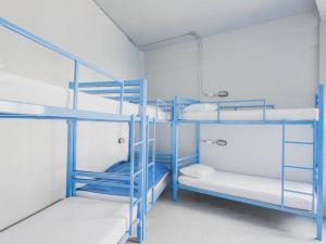 Bunk Bed in 8-Bed Female Dormitory Room