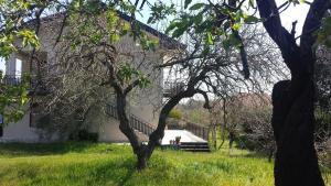Etna Country Villa - AbcAlberghi.com