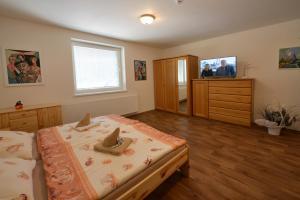 Školící středisko ABENA s ubytováním, Проживание в семье  Острава - big - 9