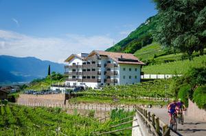 Residence Garni Hotel Vineus