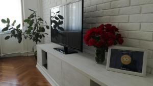 Apartment IO7, Appartamenti  Novi Sad - big - 30