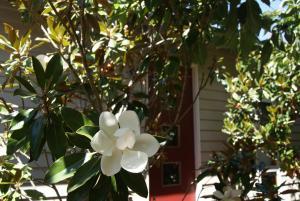 Kuca Slate, Holiday homes  Daylesford - big - 42