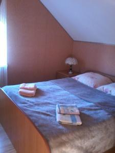 Mini Hotel Furmi, Inns  Skhidnitsa - big - 28