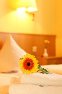 Hotelpension zum Gockl, Гостевые дома  Аллерсхаузен - big - 16